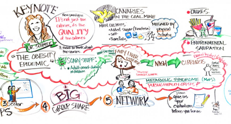 Graphic recording of Keynote speaker, Dr. Laura Schmidt at the Department of Health 2015 PAN Forum Conference, Honolulu Hawaii